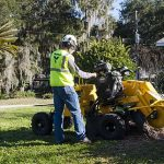 SC362 fresaceppi vermeer tree care